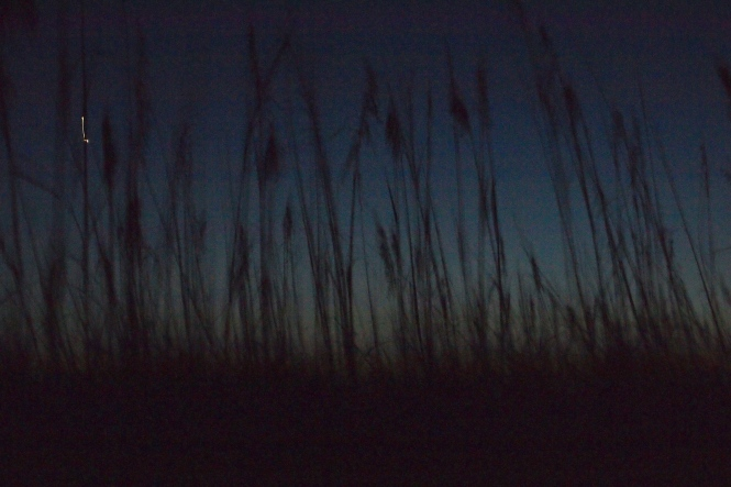 looking over the dunes with just a sliver of light left in the sky.