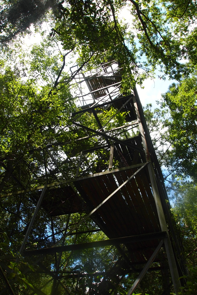 An abandoned tower.  We thought it could have been an old ranger lookout tower...view from the base.