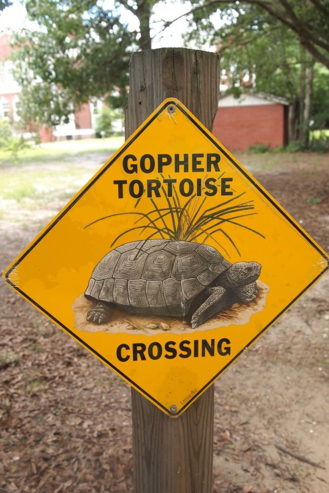 Blackburn's favorite sign ever.