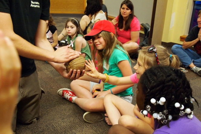 Isabella petting the armadillo in the classroom we camped out in.